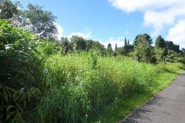 18-1988 Ohia Nani Rd (Rd. 1), Volcano, HI 96785 (MLS #628178) :: Song Real Estate Team/Keller Williams Realty Kauai
