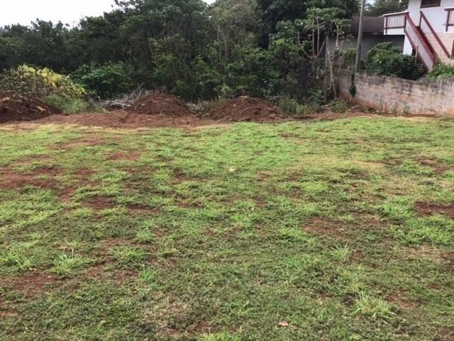4831 Kaokolo Pl, Kapaa, HI 96746 (MLS #628372) :: Kauai Exclusive Realty