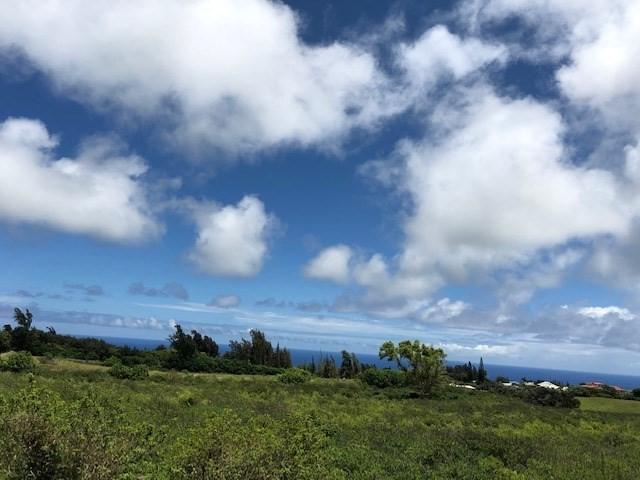 Address Not Published, Hawi, HI 96719 (MLS #628427) :: Aloha Kona Realty, Inc.