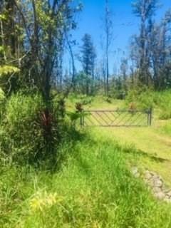 Road 8 (Moho), Hawaiian Acres, HI 96771 (MLS #628459) :: Steven Moody