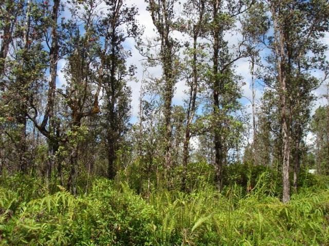 Coral Dr, Pahoa, HI 96778 (MLS #628793) :: Elite Pacific Properties