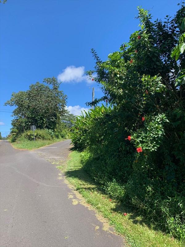 N Kahala St, Pahoa, HI 96778 (MLS #629351) :: Aloha Kona Realty, Inc.