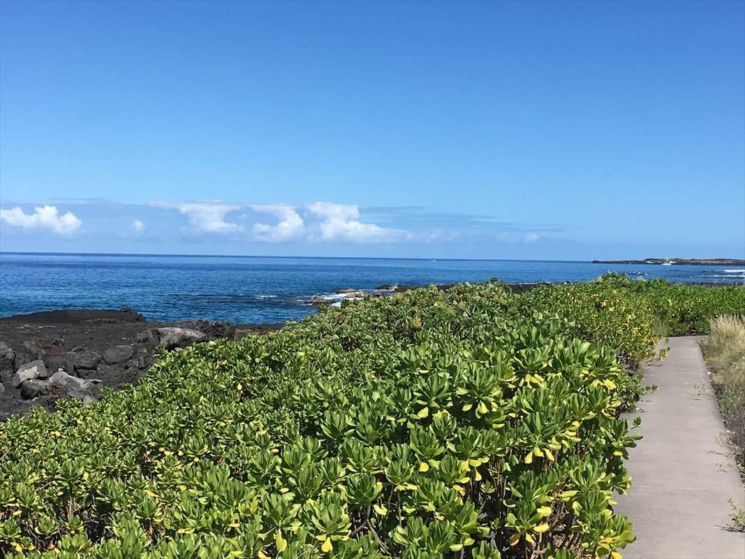 https://bt-photos.global.ssl.fastly.net/hawaii/orig_boomver_1_629531-2.jpg