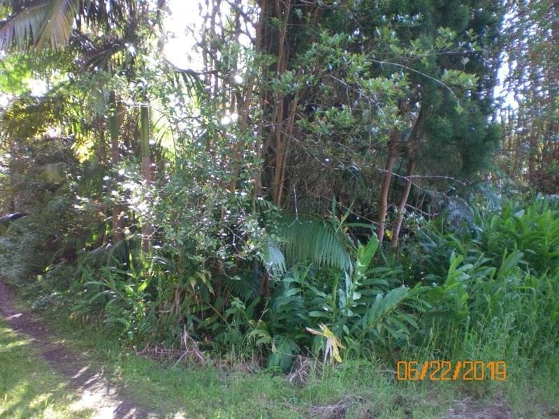 https://bt-photos.global.ssl.fastly.net/hawaii/orig_boomver_1_629897-2.jpg