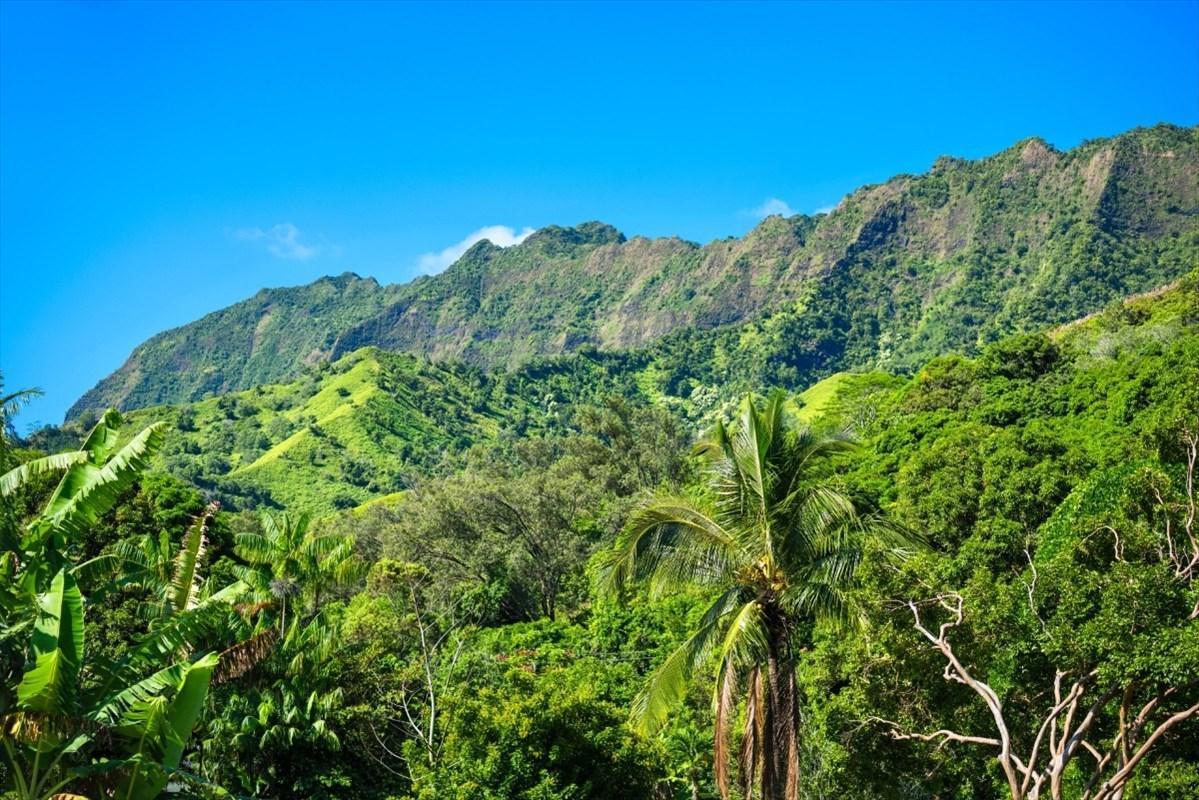 https://bt-photos.global.ssl.fastly.net/hawaii/orig_boomver_1_630121-2.jpg