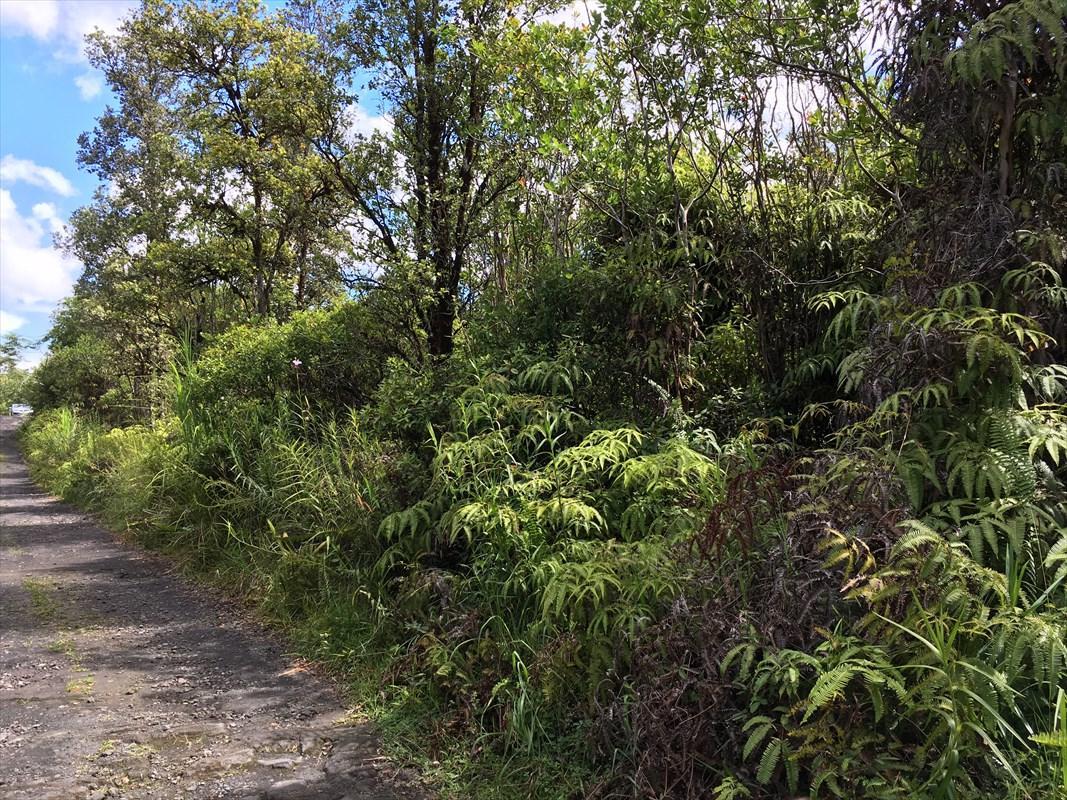 16-1573 Road 2 (Ao) - Photo 1