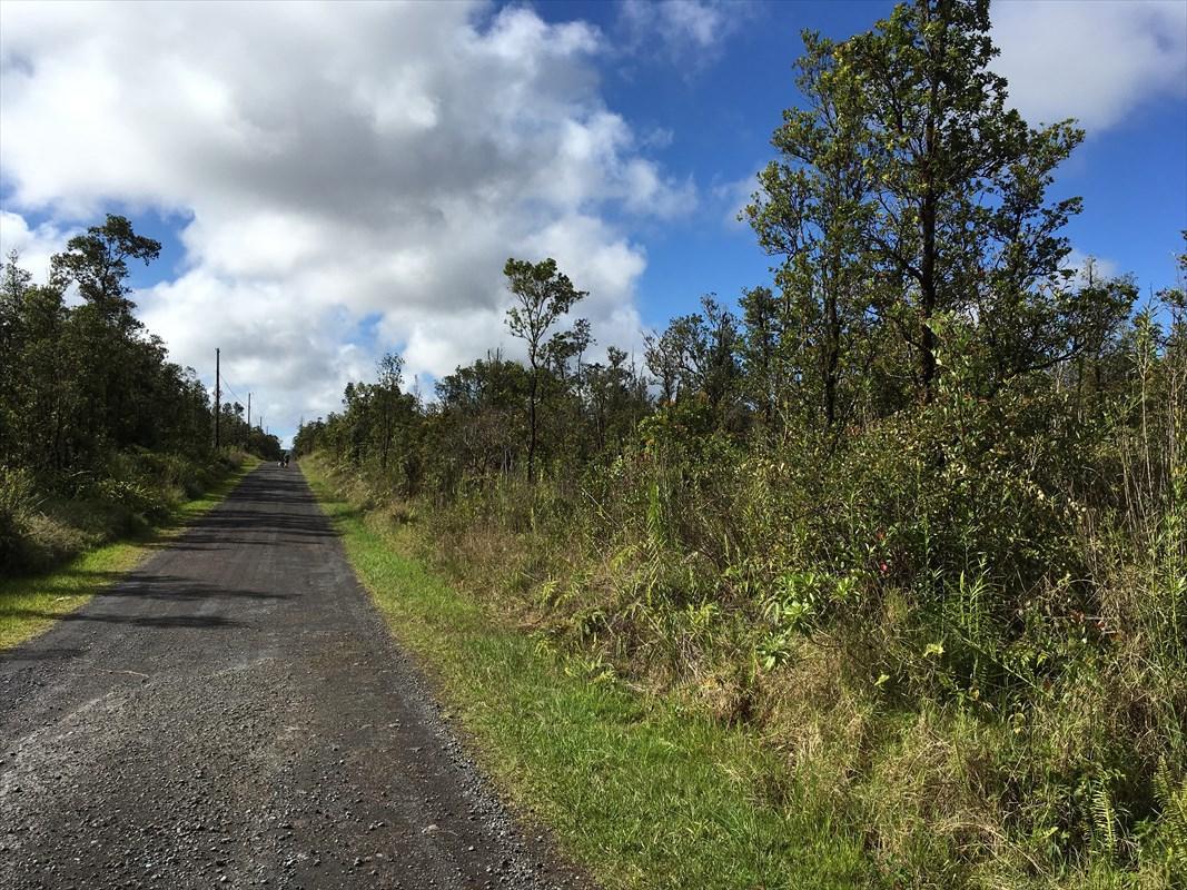 11-3145 Apuakehau Road - Photo 1