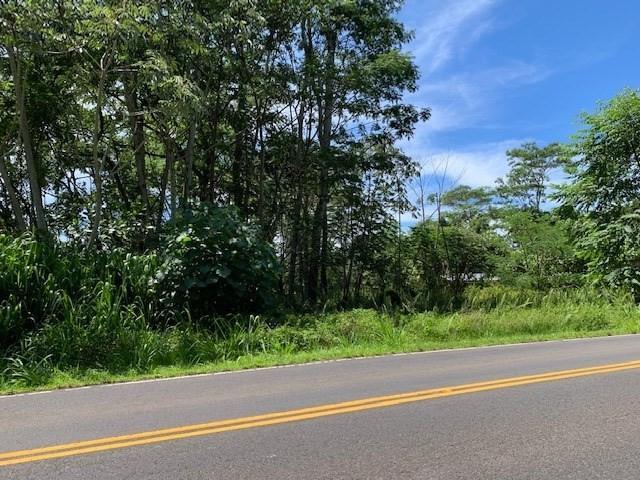 N Kahakai Blvd, Pahoa, HI 96778 (MLS #630390) :: Aloha Kona Realty, Inc.