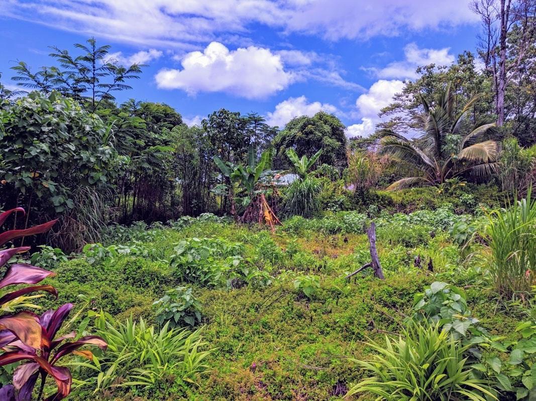 https://bt-photos.global.ssl.fastly.net/hawaii/orig_boomver_1_630638-2.jpg