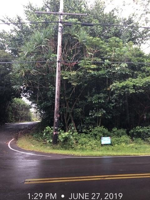 Kaloli Dr, Keaau, HI 96749 (MLS #630746) :: Aloha Kona Realty, Inc.