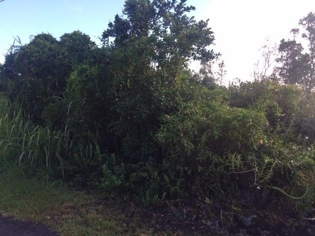 2ND AVE, Keaau, HI 96749 (MLS #630829) :: Song Real Estate Team/Keller Williams Realty Kauai
