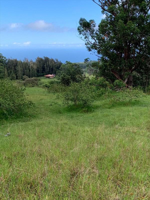 Puaono Rd, Honokaa, HI 96727 (MLS #630973) :: Elite Pacific Properties