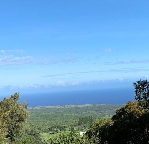 94-6256 Mamalahoa Hwy, Naalehu, HI 96772 (MLS #631330) :: Song Real Estate Team | LUVA Real Estate