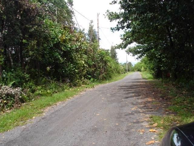 H Ave, Keaau, HI 96749 (MLS #632262) :: Aloha Kona Realty, Inc.