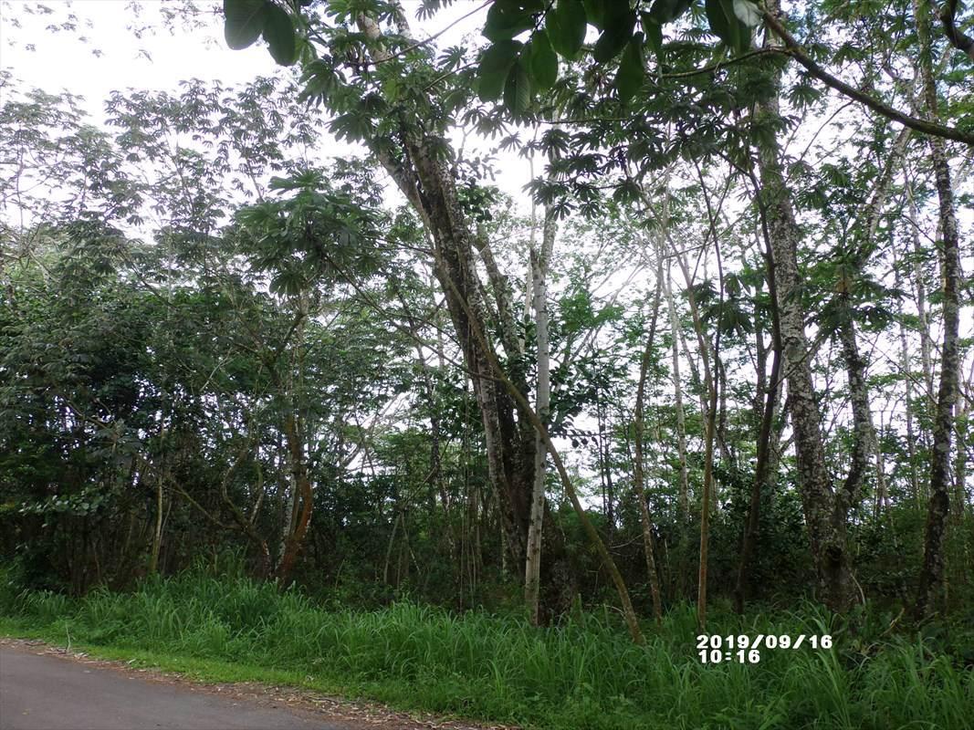 https://bt-photos.global.ssl.fastly.net/hawaii/orig_boomver_1_632400-2.jpg