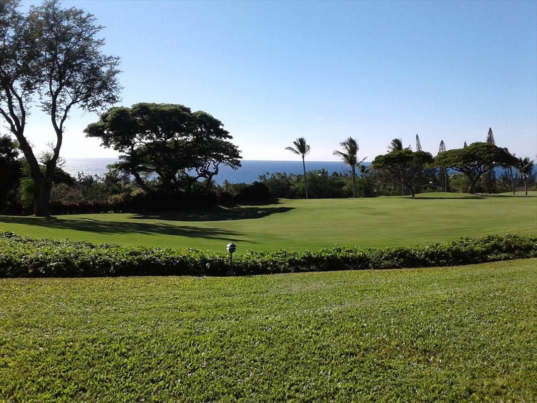 https://bt-photos.global.ssl.fastly.net/hawaii/orig_boomver_1_632625-2.jpg