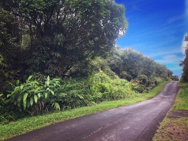 Road 1 (Uhini Ana), Mountain View, HI 96771 (MLS #632656) :: Song Real Estate Team | LUVA Real Estate
