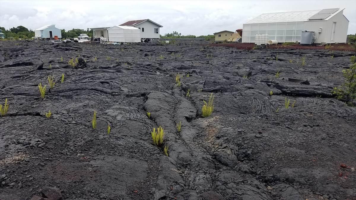 https://bt-photos.global.ssl.fastly.net/hawaii/orig_boomver_1_632739-2.jpg