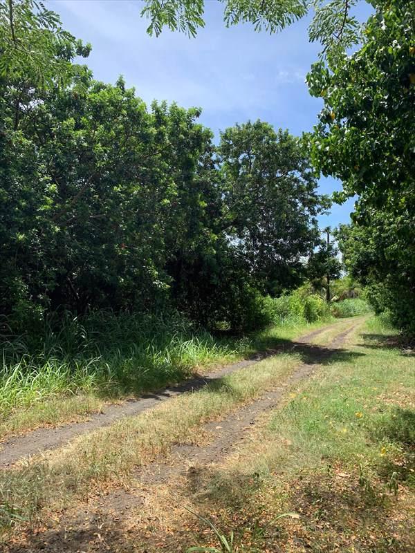Address Not Published, Naalehu, HI 96772 (MLS #632746) :: Song Real Estate Team | LUVA Real Estate