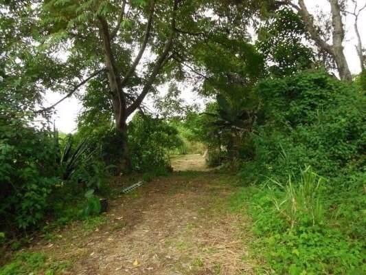 87-3036 Hawaii Belt Rd, Captain Cook, HI 96704 (MLS #633036) :: Song Real Estate Team | LUVA Real Estate