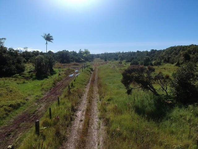 Ihope Rd, Volcano, HI 96785 (MLS #633142) :: Song Team | LUVA Real Estate