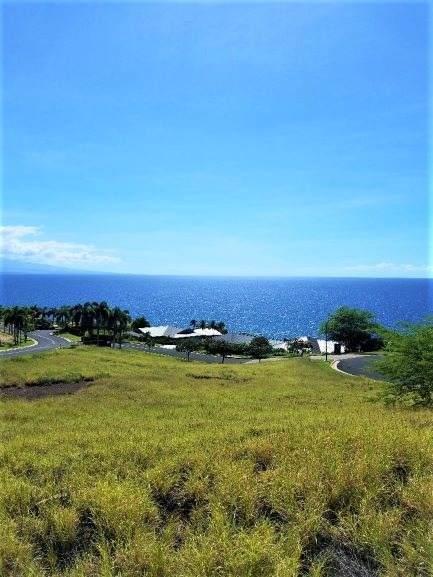 59-110 Lauhau Pl, Kamuela, HI 96743 (MLS #633215) :: Song Real Estate Team | LUVA Real Estate