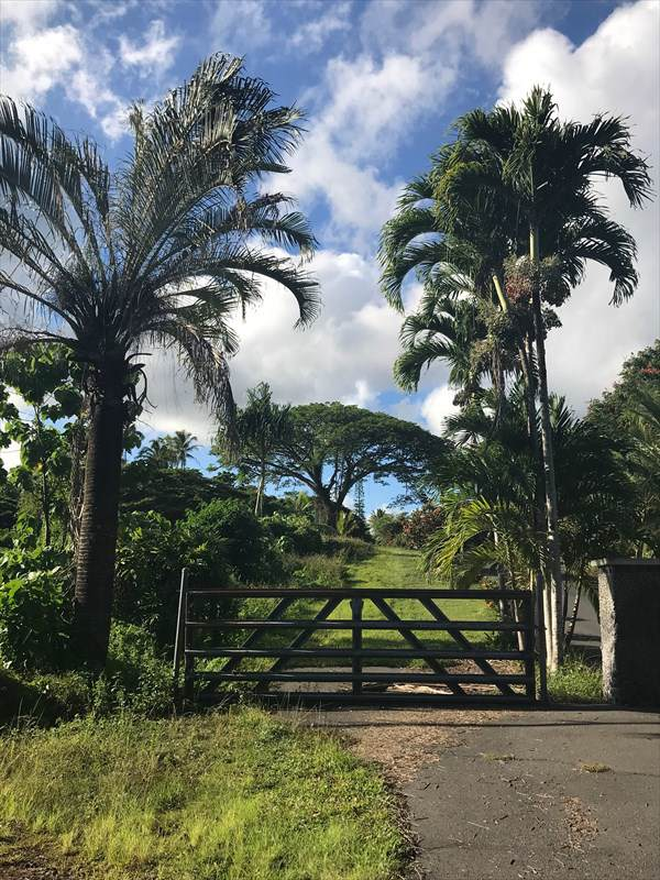 13-115 Nalu Pl, Pahoa, HI 96778 (MLS #633226) :: Elite Pacific Properties