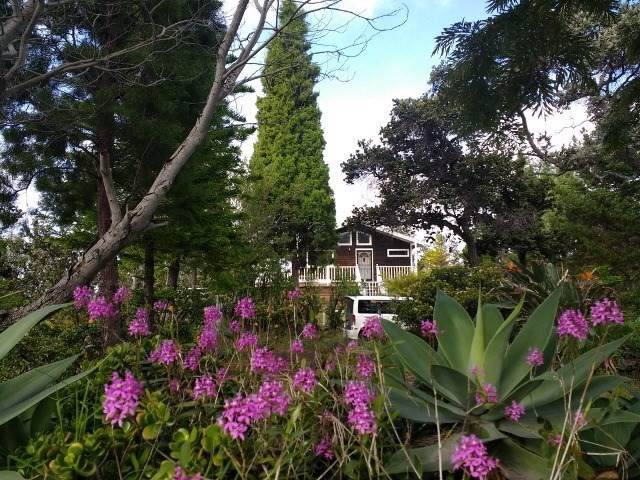92-8575 Bamboo Ln, Ocean View, HI 96704 (MLS #633431) :: Aloha Kona Realty, Inc.