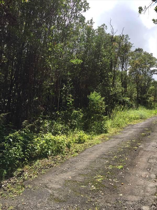 Road 7, Volcano, HI 96785 (MLS #633502) :: Steven Moody