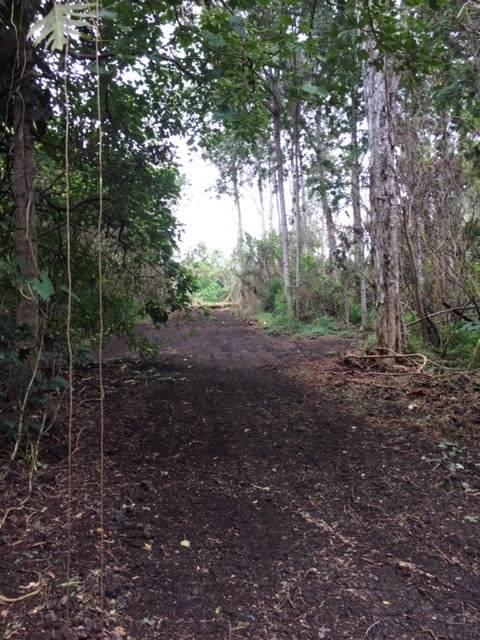 88-2762 Honomalino Dr, Captain Cook, HI 96704 (MLS #633601) :: Song Real Estate Team   LUVA Real Estate
