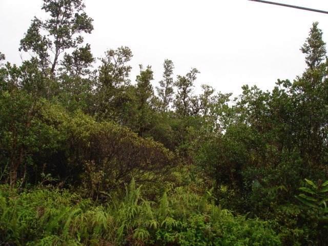 Lehua St., Mountain View, HI 96771 (MLS #634457) :: Aloha Kona Realty, Inc.