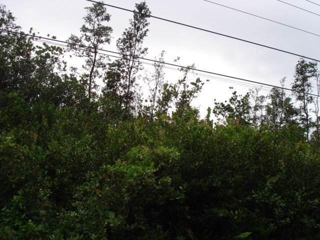 40TH AVE, Keaau, HI 96760 (MLS #634461) :: Elite Pacific Properties