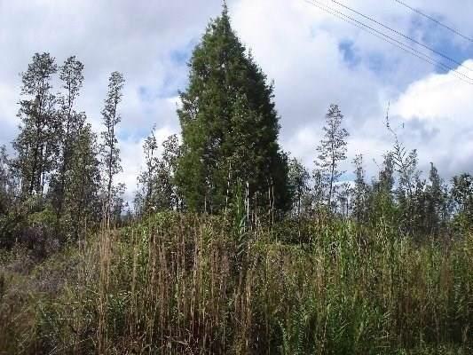Road 5 (Uau), Mountain View, HI 96771 (MLS #634635) :: Elite Pacific Properties