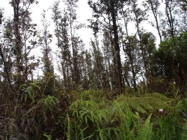 Road 7 (Opeapea), Mountain View, HI 96771 (MLS #634709) :: Elite Pacific Properties