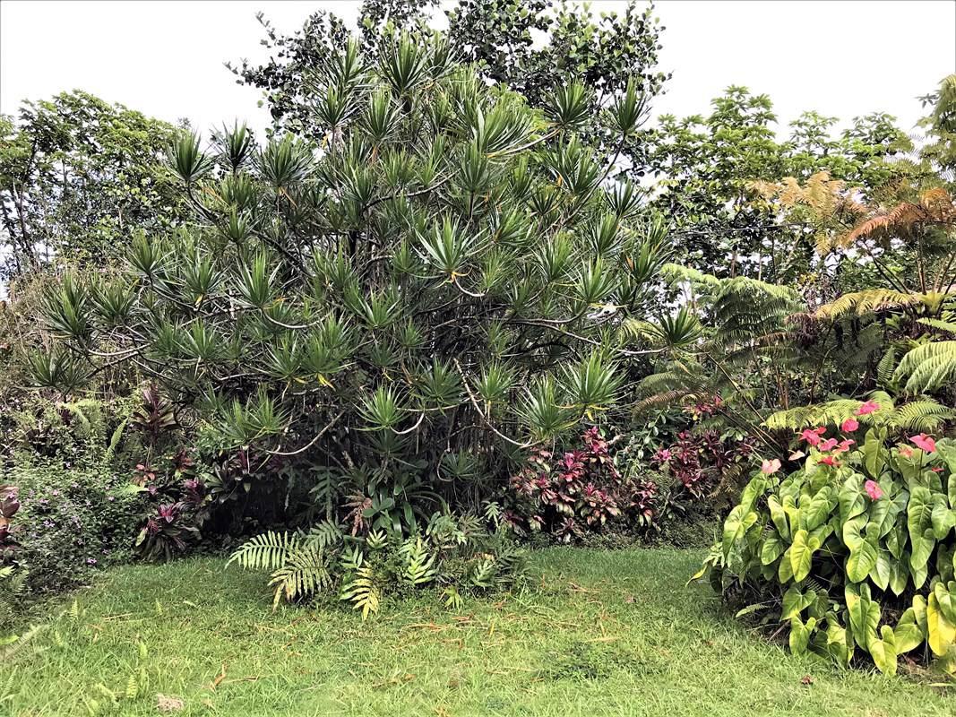 https://bt-photos.global.ssl.fastly.net/hawaii/orig_boomver_1_635056-2.jpg