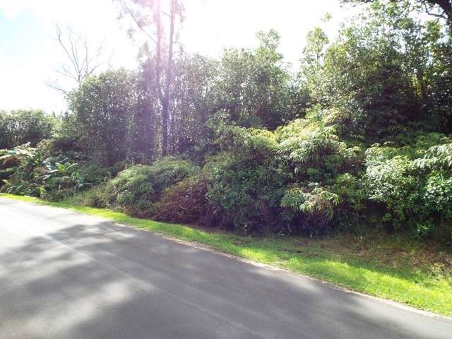 Address Not Published, Mountain View, HI 96771 (MLS #635414) :: Elite Pacific Properties