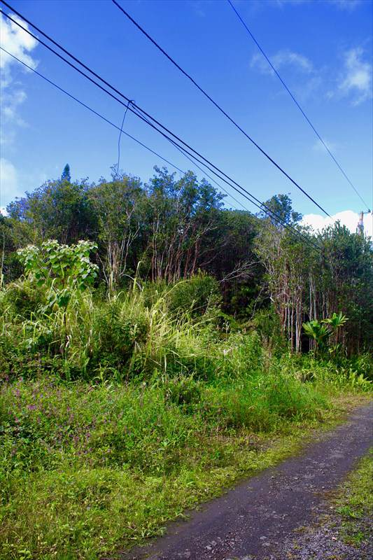Keola Pl, Volcano, HI 96785 (MLS #635442) :: Song Team | LUVA Real Estate