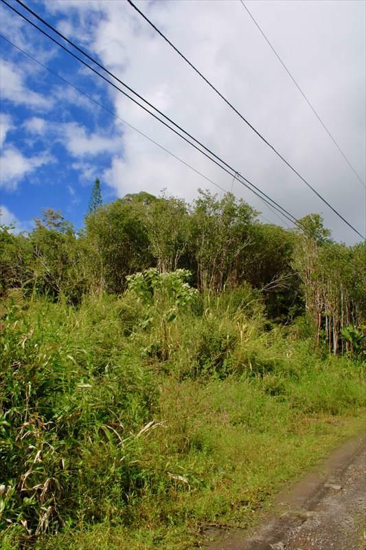 https://bt-photos.global.ssl.fastly.net/hawaii/orig_boomver_1_635442-2.jpg