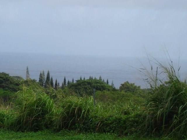 Kaupakuea Homestead Rd, Pepeekeo, HI 96783 (MLS #635656) :: Corcoran Pacific Properties