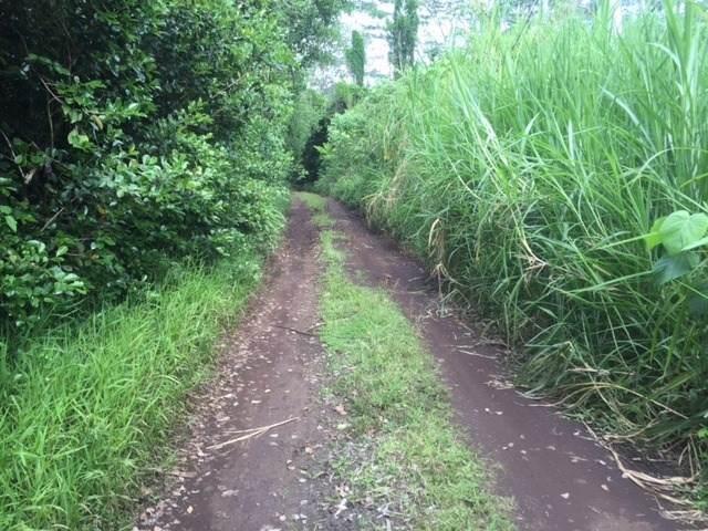 https://bt-photos.global.ssl.fastly.net/hawaii/orig_boomver_1_635877-2.jpg