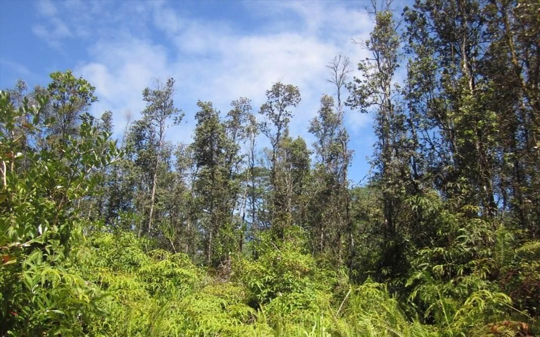 Mauna Kea Rd - Photo 1