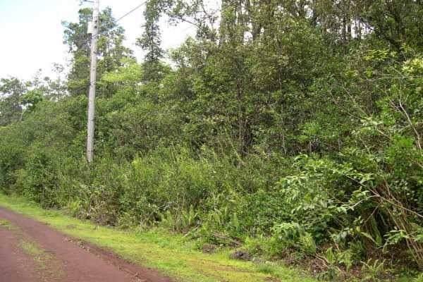 Address Not Published, Pahoa, HI 96778 (MLS #636082) :: Song Real Estate Team   LUVA Real Estate