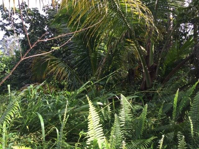 12-4337 Lanai St, Pahoa, HI 96778 (MLS #636105) :: Aloha Kona Realty, Inc.