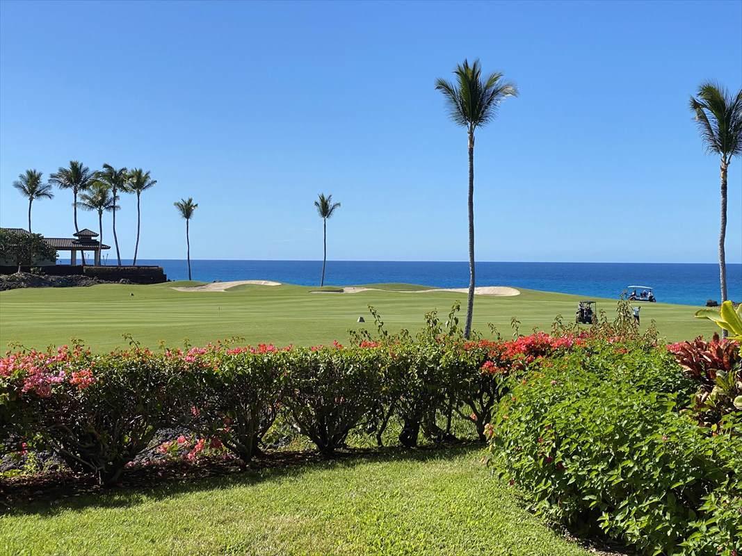 https://bt-photos.global.ssl.fastly.net/hawaii/orig_boomver_1_636171-2.jpg