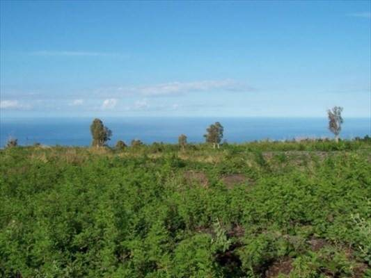 Ho'opuloa Road, Captain Cook, HI 96704 (MLS #636298) :: Iokua Real Estate, Inc.
