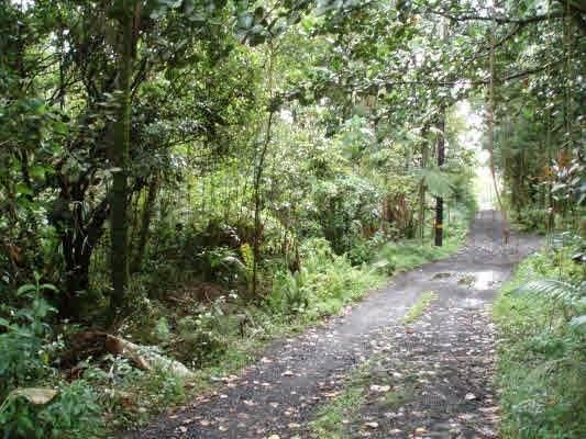 Japanese Camp, Pahoa, HI 96778 (MLS #636303) :: Iokua Real Estate, Inc.