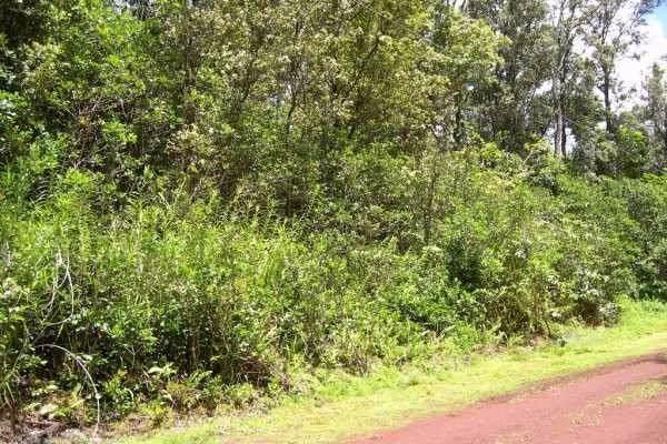 Address Not Published, Volcano, HI 96785 (MLS #636352) :: Song Real Estate Team | LUVA Real Estate