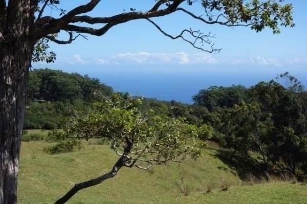 https://bt-photos.global.ssl.fastly.net/hawaii/orig_boomver_1_636377-2.jpg