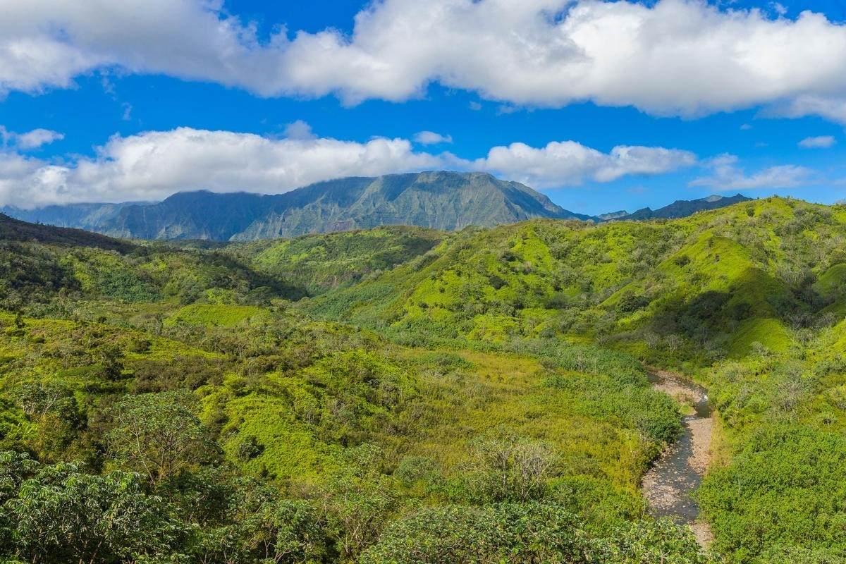 https://bt-photos.global.ssl.fastly.net/hawaii/orig_boomver_1_636441-2.jpg