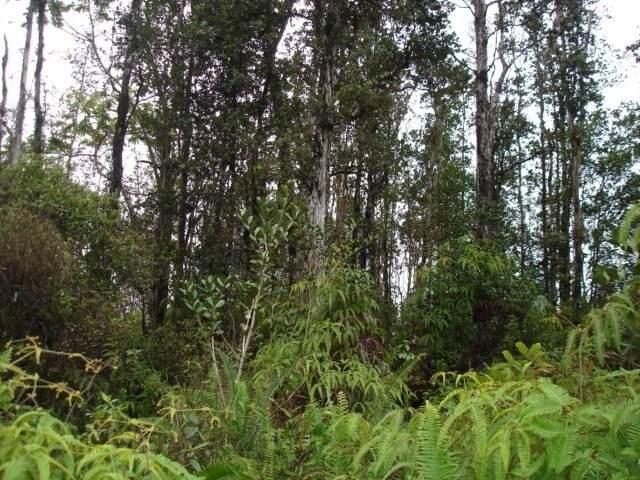 Road 8 (Moho), Mountain View, HI 96771 (MLS #636482) :: Aloha Kona Realty, Inc.
